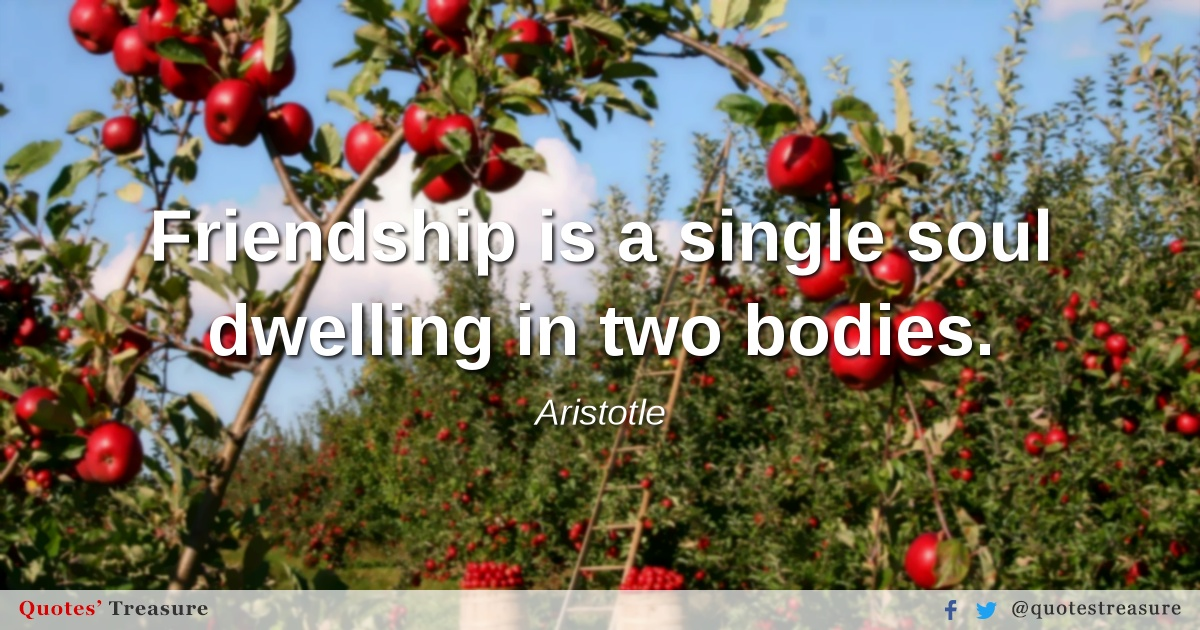 Friendship is a single soul dwelling in two bodies.