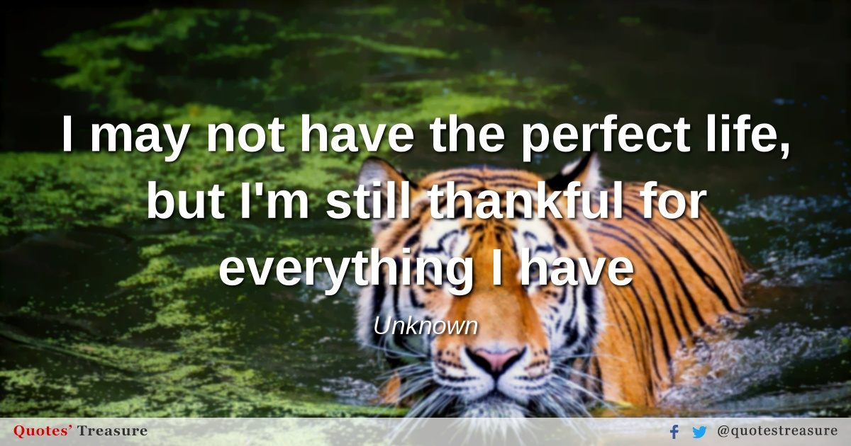 I may not have the perfect life, but I'm still thankful for everything I have