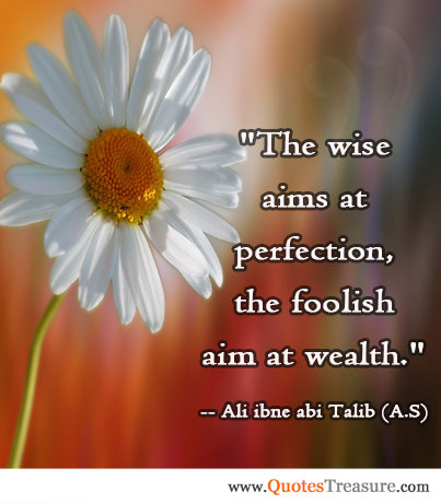 The wise aims at perfection, the foolish aim at wealth.
