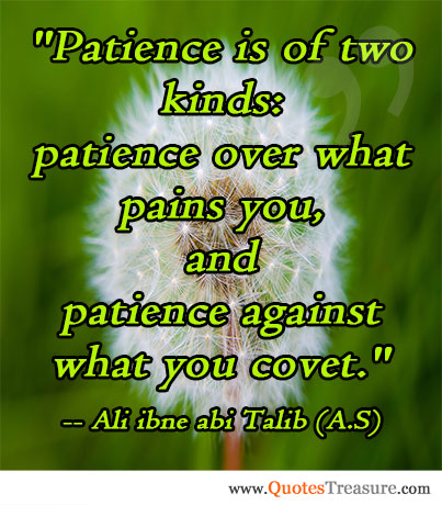 Patience is of two kinds: patience over what pains you, and patience against what you covet.