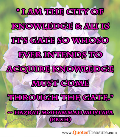 I am the city of knowledge & Ali is it's gate so whoso ever intends to acquire knowledge must come through the gate.