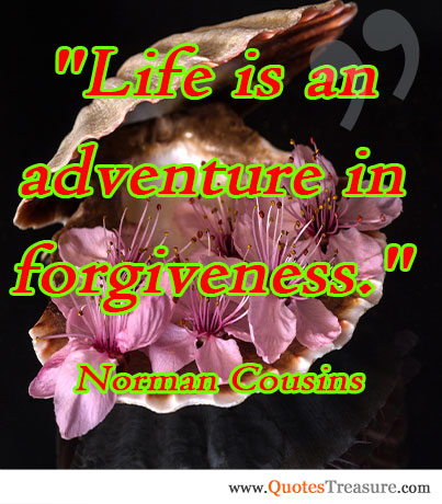 Life is an adventure in forgiveness.